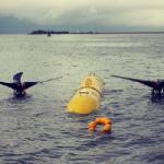 Orion Product Development Case Study - Marine Renewables,, Tidal Turbines, Tidal Energy